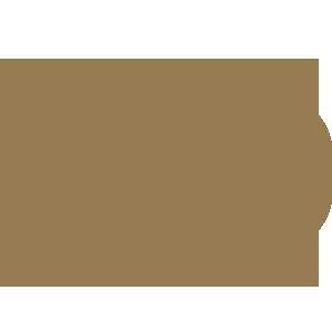 WiFi en león